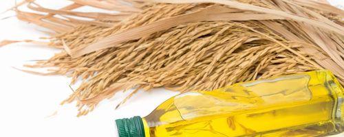 Olio di crusca di riso
