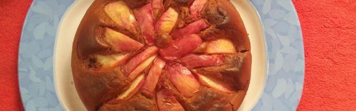 Cocoa peach cake