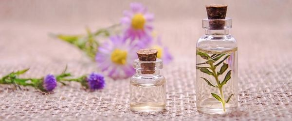 Essential oils and blends of essences for anxiety, stress and insomnia