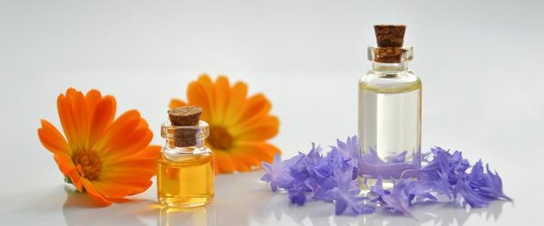 Essential oils with an antiviral and antibacterial action