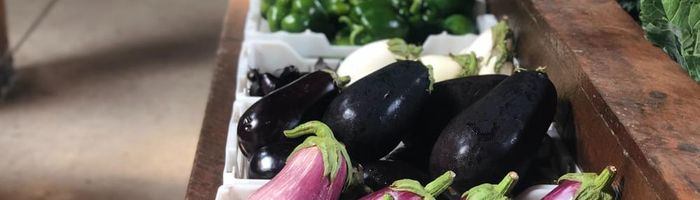 Food combinations and cooking methods, eggplants