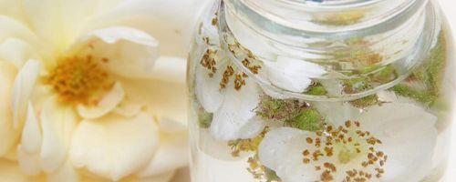 Ätherische Öle, die besten Verbündeten für eine weiche, gesunde und verjüngte Haut