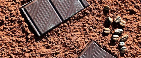 Cocoa essential oil