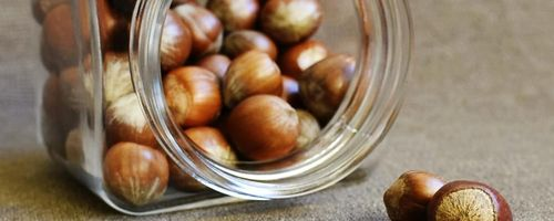 Hazelnut oil, amazing beauty oil