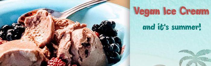 Vegan chocolate ice cream with berries