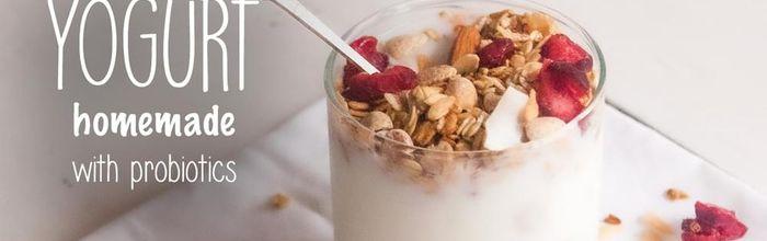 Homemade yogurt with probiotics